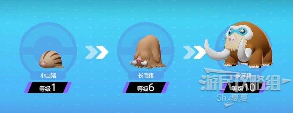 《寶可夢大集結》象牙豬技能打法全攻略 3